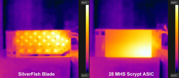 silverfish-thermal-images