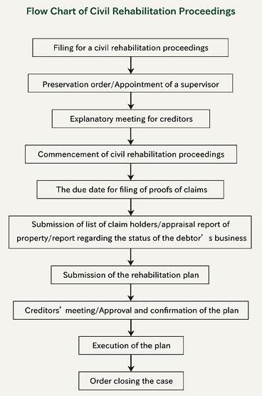 civil-rehabilitation-proceedings-flow-chart